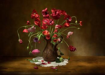 Poppies / ***