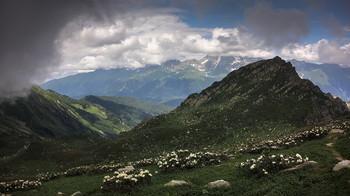 The mountain valley / ***