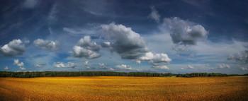 About Cloud / ***