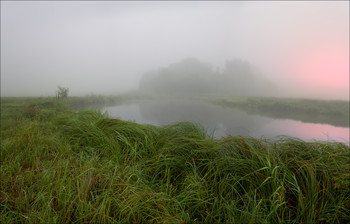 Misty / ***