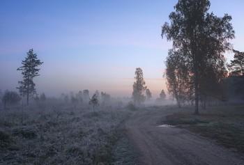 The roads we take / ***