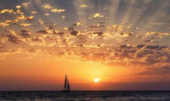 at sunset / ***
