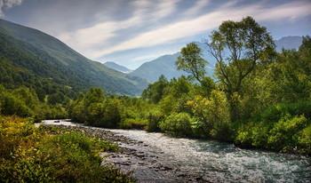 Mountain creek / ***