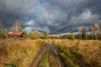 Autumn contrasts / ***