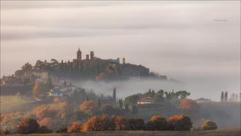 Foggy morning / ***