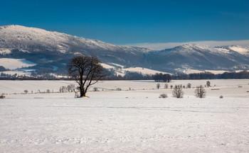 Góry Opawskie / ***