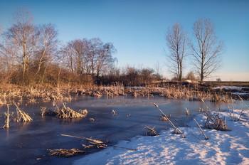 Spring Pond / ***