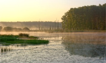 Morning on the oxbow / ***